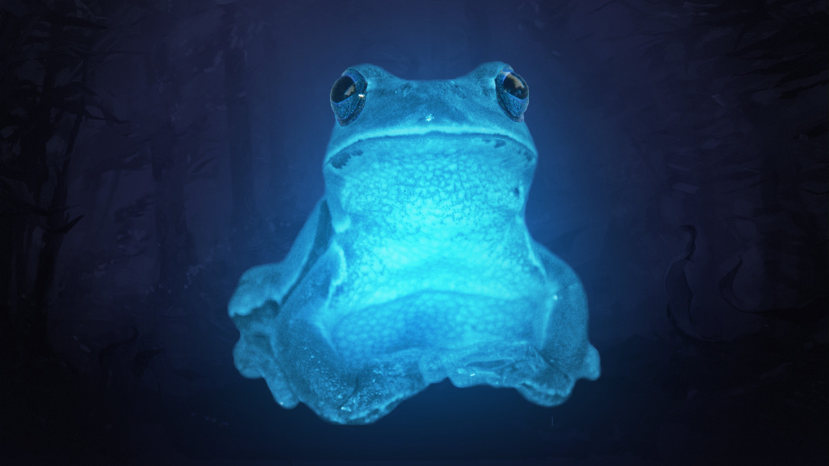 Dota mysteries: Who is IceFrog?