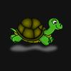 Turtle Masters*