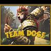 Team Doge*