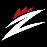 Team ZODIACS