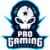 ProGaming e-Sports