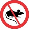 No Rats*