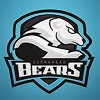 Suprahead BEARS