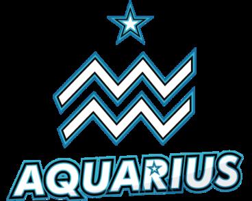 Aster.Aquarius