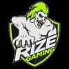 RizeGaming