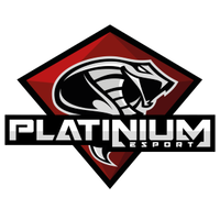 Team Platinium-eSport