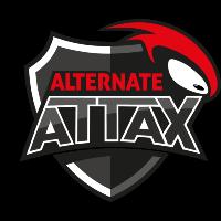 Team ALTERNATE