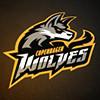 Copenhagen Wolves Academy