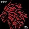 King Lion Team*