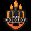 Team Molotov