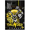 Thunder Awaken*