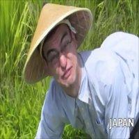 Gods of The Rice Fields