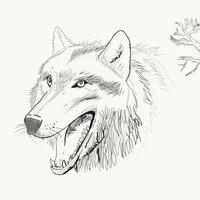 Lunar Wolves