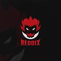 Reddix.Innovation