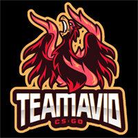 Team Avid