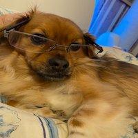 KWe Limittesting