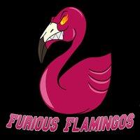 Furious Flamingos