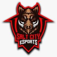 SaltCity eSports