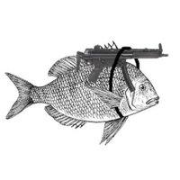 CSButterfische