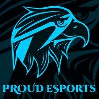 Proud eSports Academy