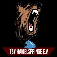 TSV-Hamelspringe-Academy