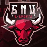Team GNU