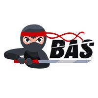 Team BAS