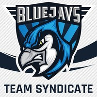 BLUEJAYS Syndicate