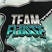 TeamFlosse