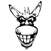 Nasty Donkeys