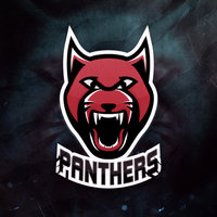 All in Panthers