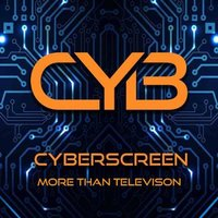 Cyberscreen Disaster