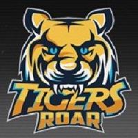 Tigers-Roar