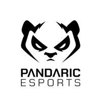 Pandaric eSports Amethyst