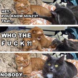 minz3